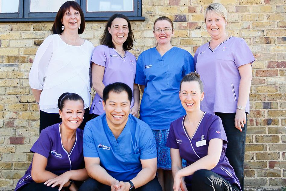 The Blueberry Dental Team
